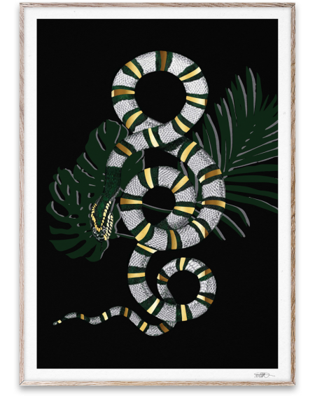 Paper Collective - Snake poster
