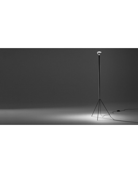 FLOS - Luminator Floor Lamp