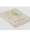 Various selection - Plakat Vuillard Le Lithographie - Plakaty Skandynawskie