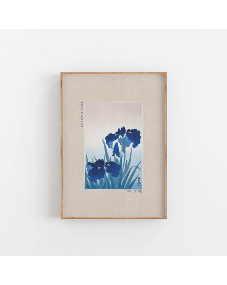 Various selection - Iris Flowers Ohara Koson - Plakaty Skandynawskie