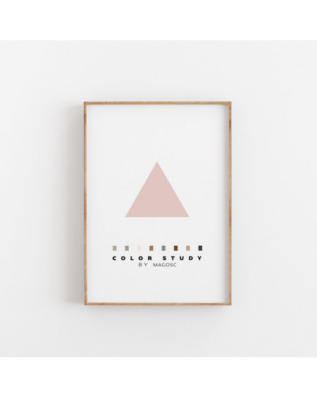 Plakat Color Study Rose Triangle by MAGOSC
